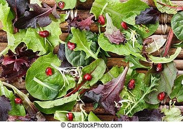 Organic Spring Mix Lettuce - Variety of organic baby lettuce...