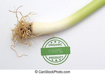 Organic spring onion