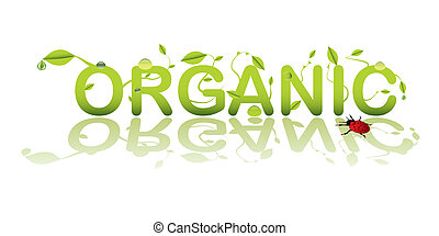Text for organic shop or product with lady bug bird