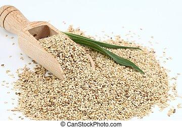 Organic unpeeled white sesame seeds