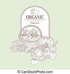 Organic, Vector Illustration Banner