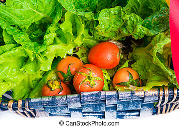 Organic vegetables in the wicker basket