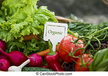 Organic vegetables with label