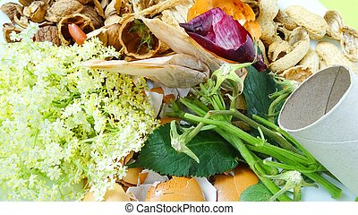Organic waste for composting. Vegetable scraps, tea bags, paper roll and egg shells. Zero waste lifestyle