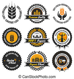 organic wheat label set with differently varied modern, vintage elements, eps 8 , no transparencies, ideal for prints