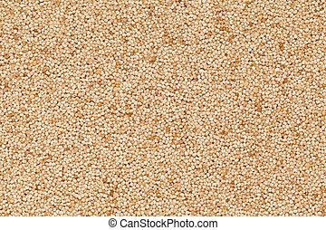 Organic White Poppy seed (Papaver somniferum) closeup background texture.