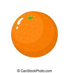organico, fruit., tangerine., isolato, illustrazione, style., fondo., frutta, vettore, arancia, fresco, bianco, intero, qualsiasi, cartone animato, design.