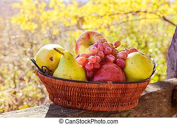 organico, frutta, in, cesto, in, estate, grass., fresco, uva, pere, e, mele, in, natura
