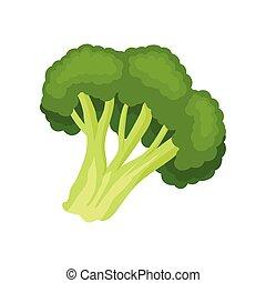 organico, illustration., cibo, concept., vettore, broccolo