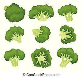 organico, illustration., cibo, set., vettore, concept., broccolo