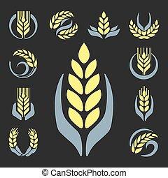 organiczny, granuluje, jadło, rolnictwo, przemysł, ilustracja, albo, wektor, projektować, zboże, logo, kasownik, odznaka, symbol, kłosie