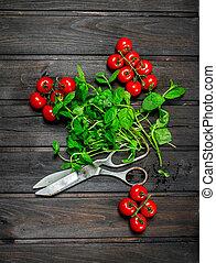 organiczny, tomatoes., zdrowy, jadło., świeży, mennica