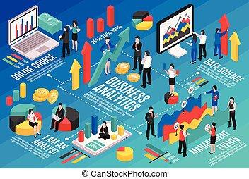 organigramme, isométrique, analyste, business