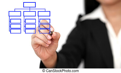 organisation, dessin, business, diagramme