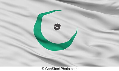 Organisation Of Islamic Cooperation Flag Closeup Seamless ...