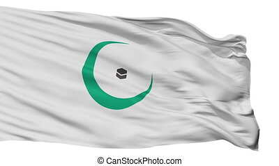 Organisation Of Islamic Cooperation Flag Isolated Seamless ...
