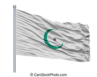 Organisation Of Islamic Cooperation Flag On Flagpole, Isolated On White
