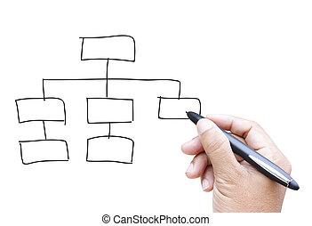 organisation, tabelle, zeichnung, hand