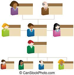 organisatorisch, doosje, tabel, mensen
