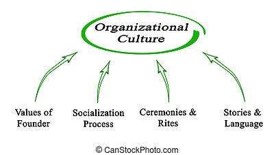 organisatorisch, kultur