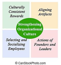 organisatorisch, kultur, verstärkung
