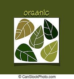 organisch, eenvoudig, abstract, leaves., vector, ontwerp, groene, concept.