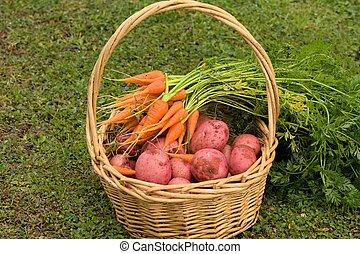 organisch, groentes