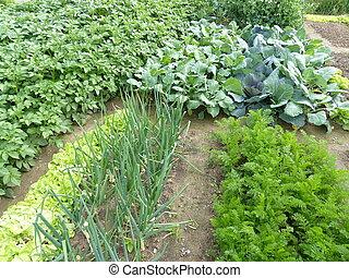 organisch, tuin