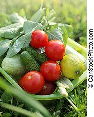 organisches essen, draußen