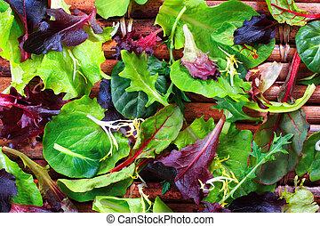 organisk, fjäder, blanda, grönsallat