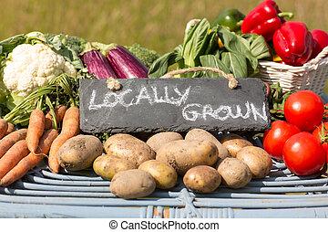 organisk, grönsaken, bönder, stå, marknaden