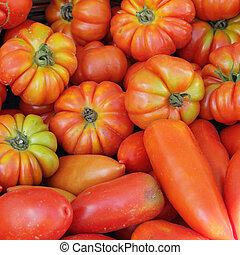 organisk, tomaten, som, bakgrund