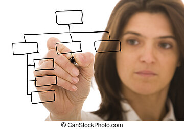 Organization chart - businesswoman drawing an organization...