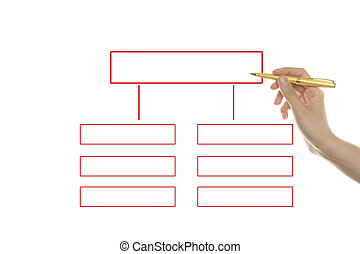 Organization chart - Hand draws the organization\\\'s...