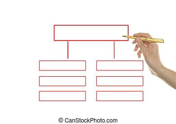 Organization chart - Hand draws the organization's structure...