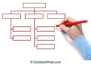 Organization chart - The hand draws an diagram on a white...