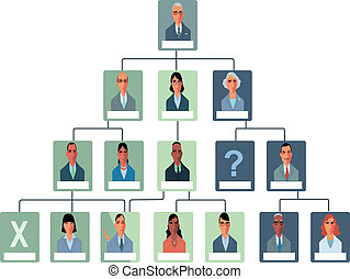 Sample organization structure flow chart, vector illustration