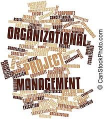 organizativo, gerencia de proyecto