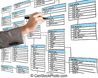 Organize a database - Programmer draws and organizes a new...