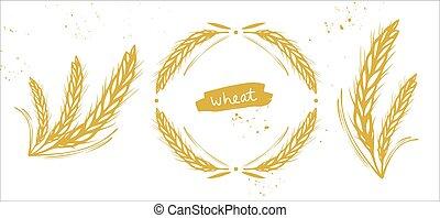 orge, oreilles, blé, ensemble, seigle