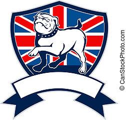 orgulloso, perro presa inglés, bandera inglesa