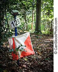 Orieneering Equipment in the Forest - Orienteering is a ...