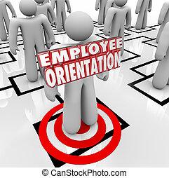 orientacja, pracownik, wykres, słówko, nowy pracownik, ...