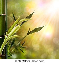 oriental, resumen, fondos, bambú, follaje