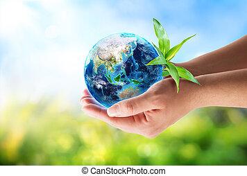 oriente, em, mãos, -, ambiental