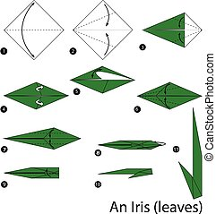 Origami Iris Instructions and Diagram | 179x184