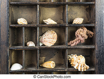 vintage type case with sea shells