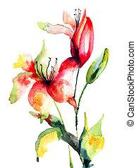 Original Lily flower, watercolor illustration