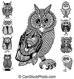 origineel, kunstwerk, van, uil, inkt, hand, tekening, in,...