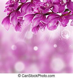 orkidé, blomma, gräns, design, tillsluta
